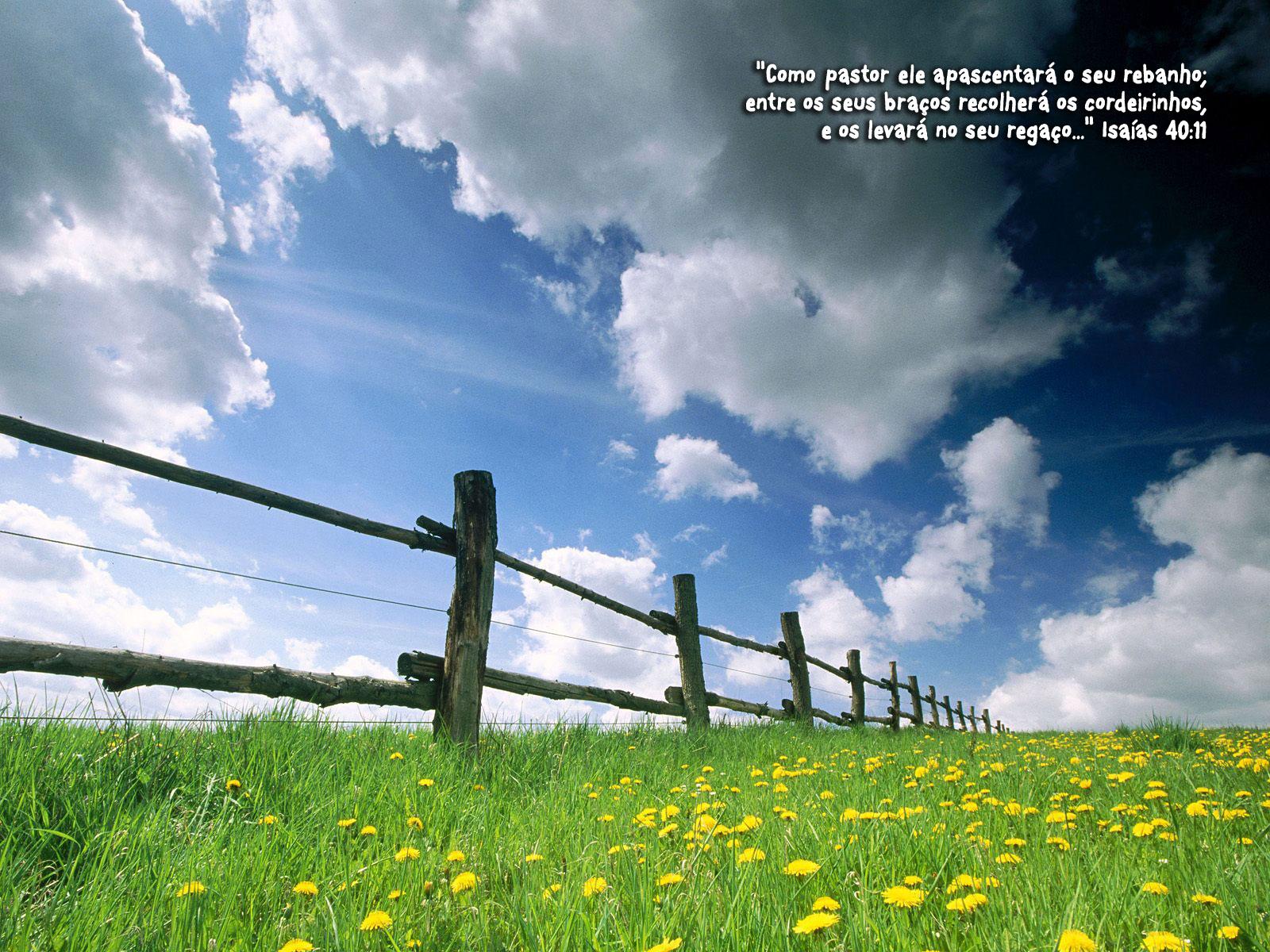 http://devocionaldiario.com.br/imagens/farm_grass.jpg