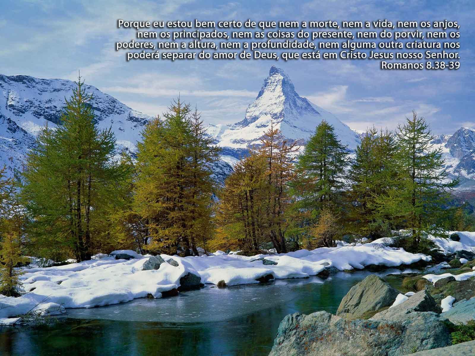 http://devocionaldiario.com.br/imagens/trees_contrast.jpg