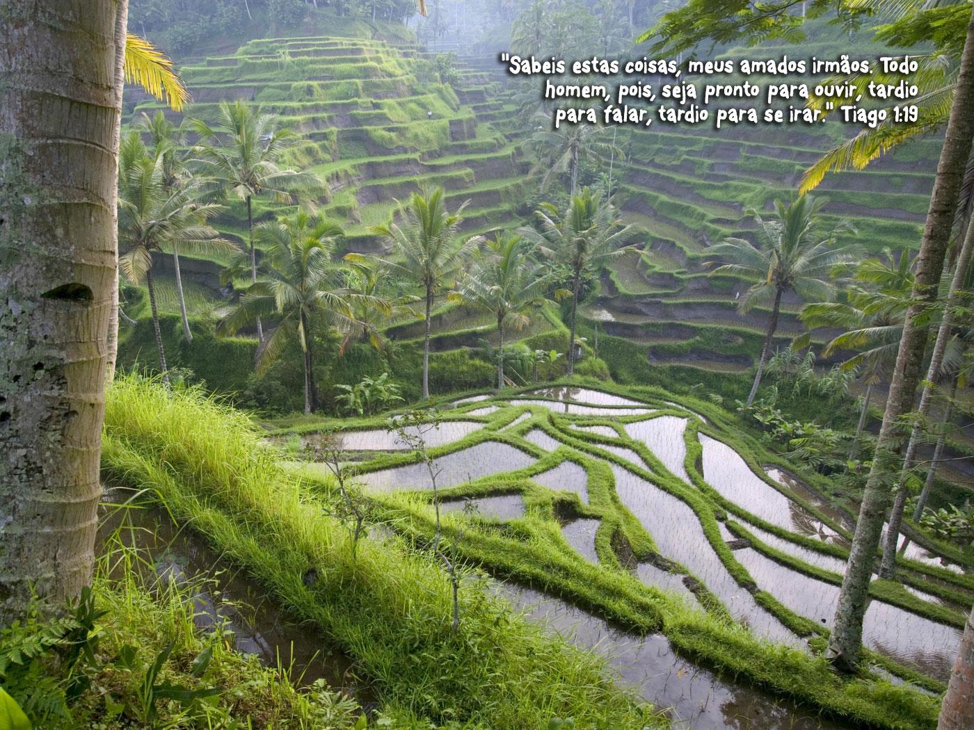http://devocionaldiario.com.br/imagens/valley_babylon.jpg